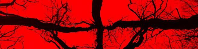Blair Witch w ŠKODA 4DX. Pierwszy horror w formacie 4DX!